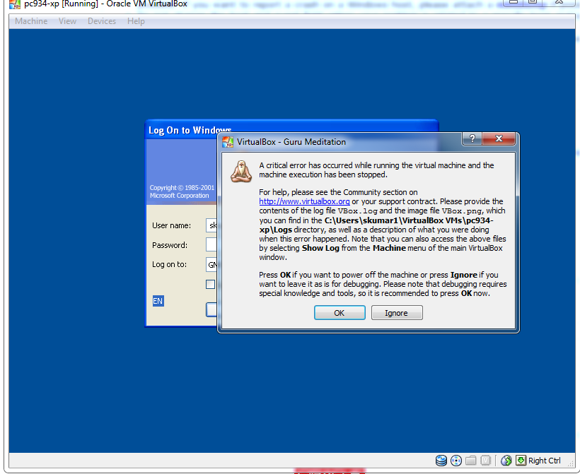 10687 (Critical Error occurs on starting the Virtual Box with Win XP